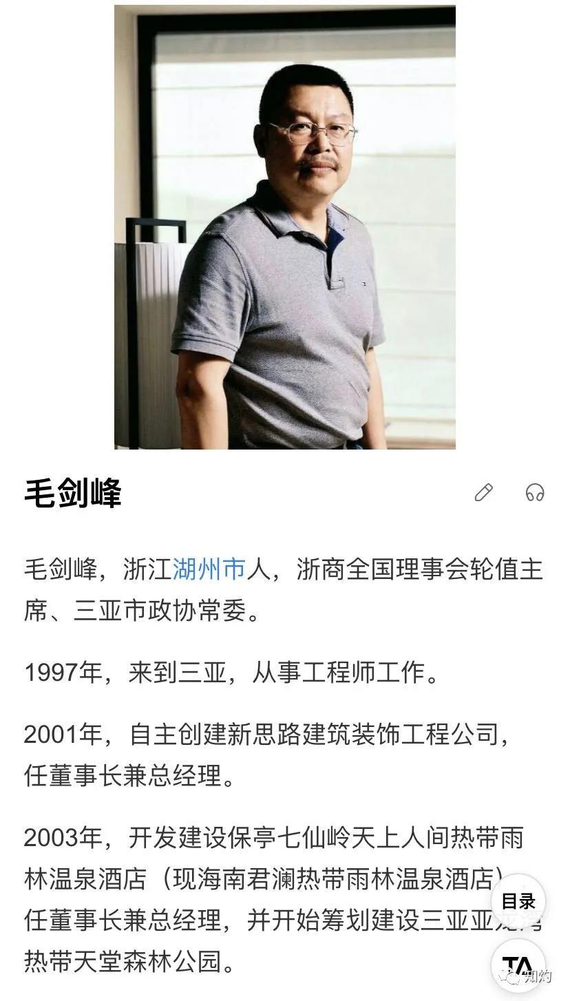 三亚一公司副总裁实名举报董事长行贿副省长1000万,案涉19亿项目