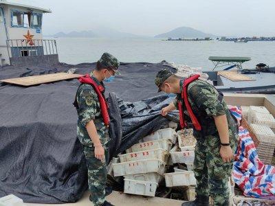 福建海警查办违法捕捞案79起 查扣渔获物约20万公斤