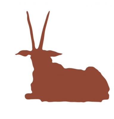 物流点惊现42公斤羚羊角